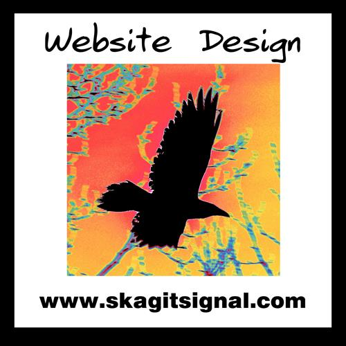 Website Design my www.SkagitSignal.com. Ask about Original Artwork, too!