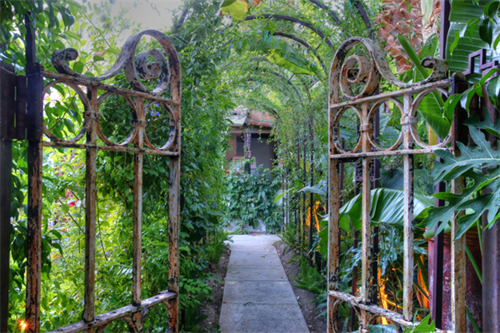 Gates to the secret rose garden
