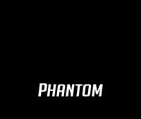 Phantom Firm