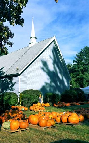 The Annual Pumpkin Patch set up by St. Marks Episcopal CHurch