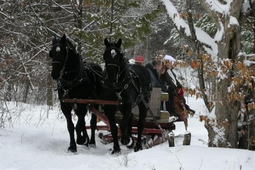 Gallery Image Winter_Sleigh_Ride.jpg