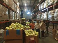 Food Bank / AB CARES