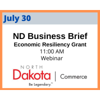 Economic Resiliency Grant Business Briefing, hosted by GNDC