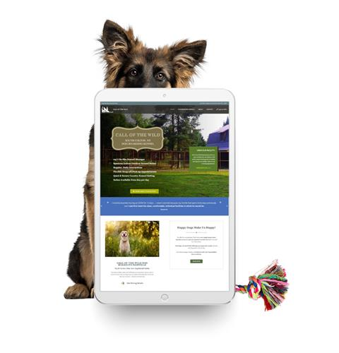 Call of the Wild Dog Boarding Website in South Colton, NY