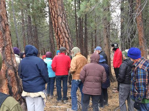 4th Annual Eastern Sierra History Conference - Jeffrey Pine Interpretive Tour