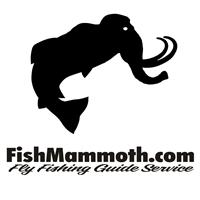 FishMammoth