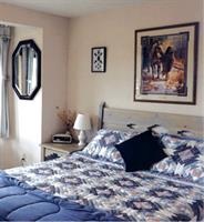 B&B downstairs private Queen bedroom.  Home is decorated with western and wildlife art - paintings, sculptures and photography.