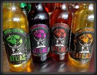 ATLAS Cider Co. Ciders (left to right)- Session Apple, Blackberry, POM-Cherry, Apricot. (Dragonfruit Summer Seasonal not pictured)