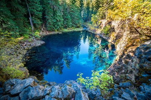 Gallery Image Blue-Pool-Mckenzie-River-1560x1041.jpg