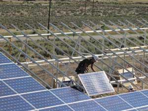 Rifle Campus Solar Array