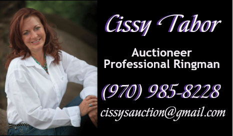 Cissy's Auction Services