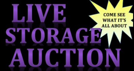 Storage Auctioneer