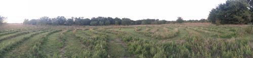 Heartland Farm Labyrinth