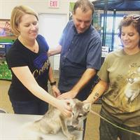Zoo Society Members Brian and Abby Howe meeting an Arctic Fox Kit
