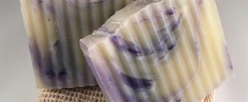 Lavender & Cedar Soap Bars
