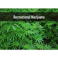 Recreational Marijuana and Its Impact on the Ilinois Workplace Examined
