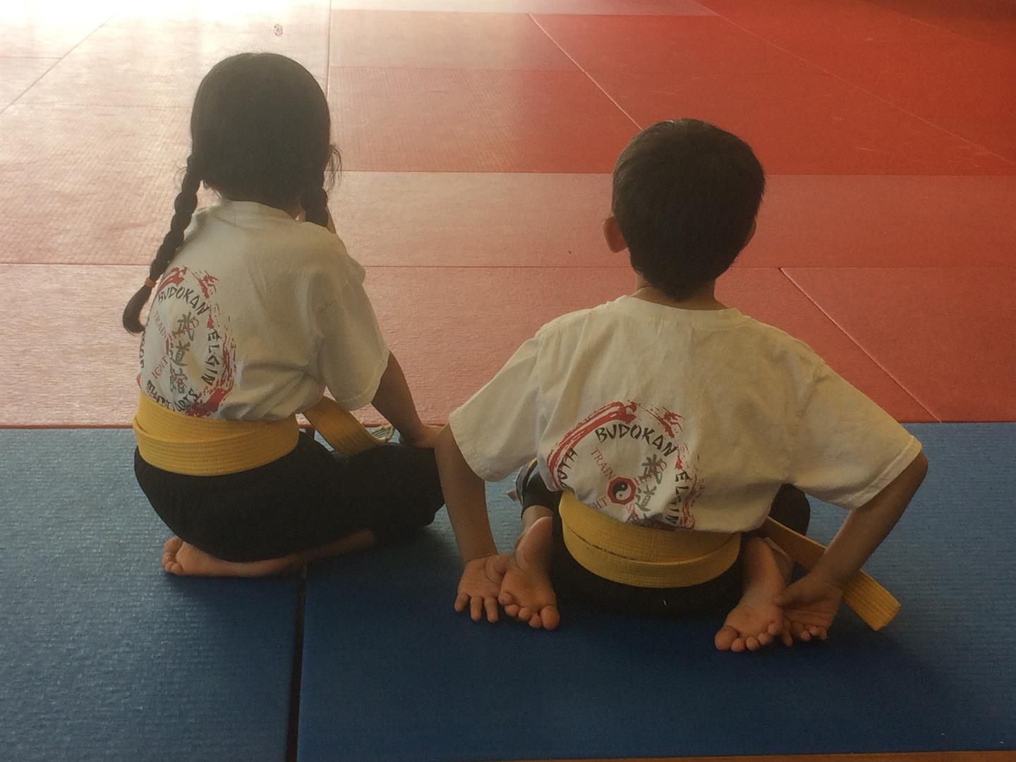 Future Budokan Teachers
