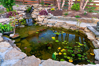 Gallery Image decorative-koi-pond_-_Copy.jpg