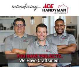 Ace Handyman Services Fox Valley