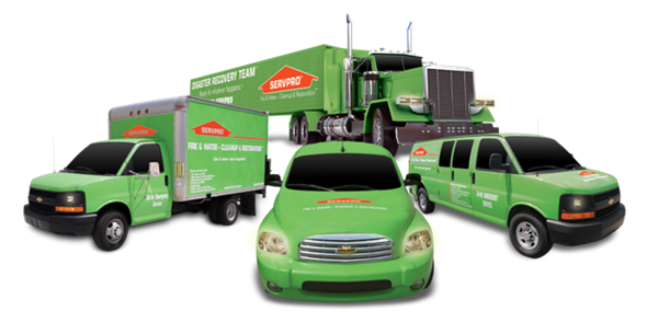 Gallery Image Servpro_trucks.png