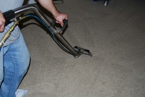 Gallery Image Carpet_Steam_Cleaning_Carpet_Wiser.JPG