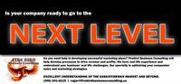 Firebird Business Consulting Ltd. - Next Level Business Solutions - Saskatoon and area