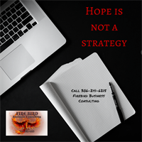 Hope is not a strategy - call Firebird Business Consulting Ltd. 306-241-6215 Saskatoon Warman and area