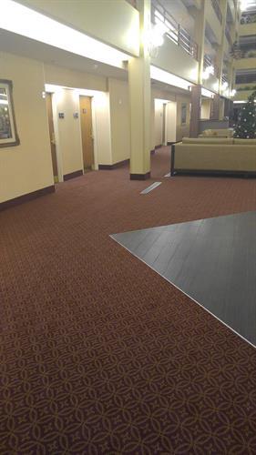 New carpet installed Nov 2015