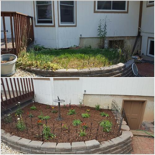 Small refurbish with fresh plants