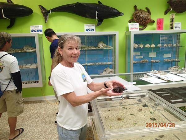 Aquarium, Museum, Touch Tank - open to public M-F 1:30 pm to 4:30 pm