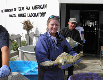 Sea turtle rescue in partnership with Sea Turtle, Inc.