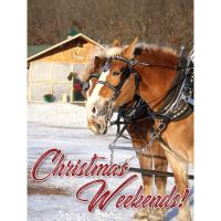 Christmas Weekends at Vino in the Valley