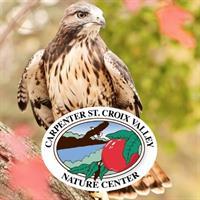"Ellsworth Public Library presents ""Raptors with Carpenter Nature Center"""