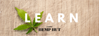Learn Your CBDs: A Hemp Primer for Everyone