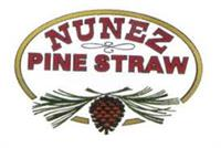 Nunez Pine Straw
