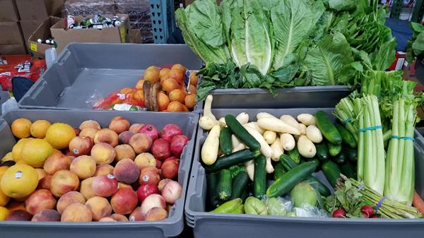 Veggies for Food Pantry