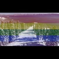 Pride Ride Weekend at Homewood