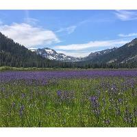 Guided Hike of Lower Carpenter Valley