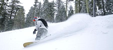International Alpine Guides/Alpine Skills International