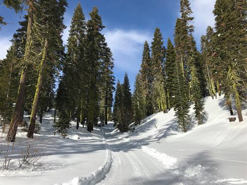 Groomed Winter Trail System at Clair Tappaan Lodge