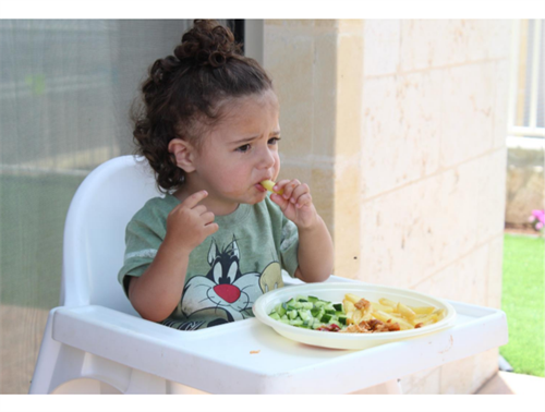 Raising Healthy Eaters-Toddler Edition!