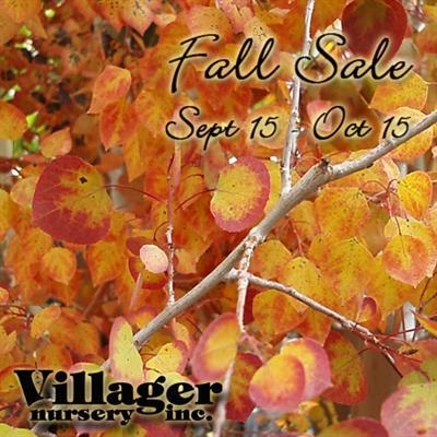 Fall Sale Aspen 9/15-10/15 2017