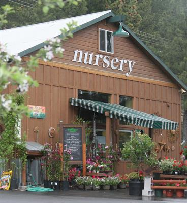 Villager Nursery Front May