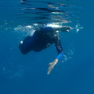Swim in the Clear Waters of Donner Lake and Lake Tahoe