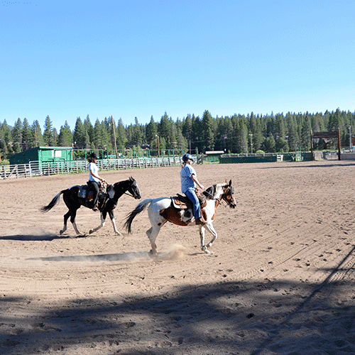 Rodeo Grounds - McIver Arena