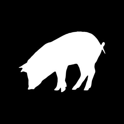 MVM Pig