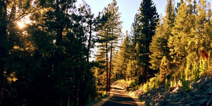 Trout Creek Trail