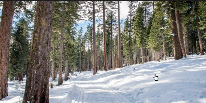 Cabin Creek Trail
