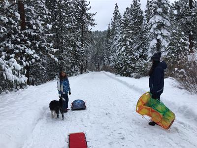 Sledding in the trails just behind the cabin