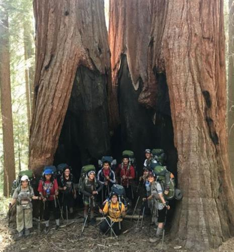 ARC summer course students hike through a sequoia grove at the beginning of an 8-day backpacking trip